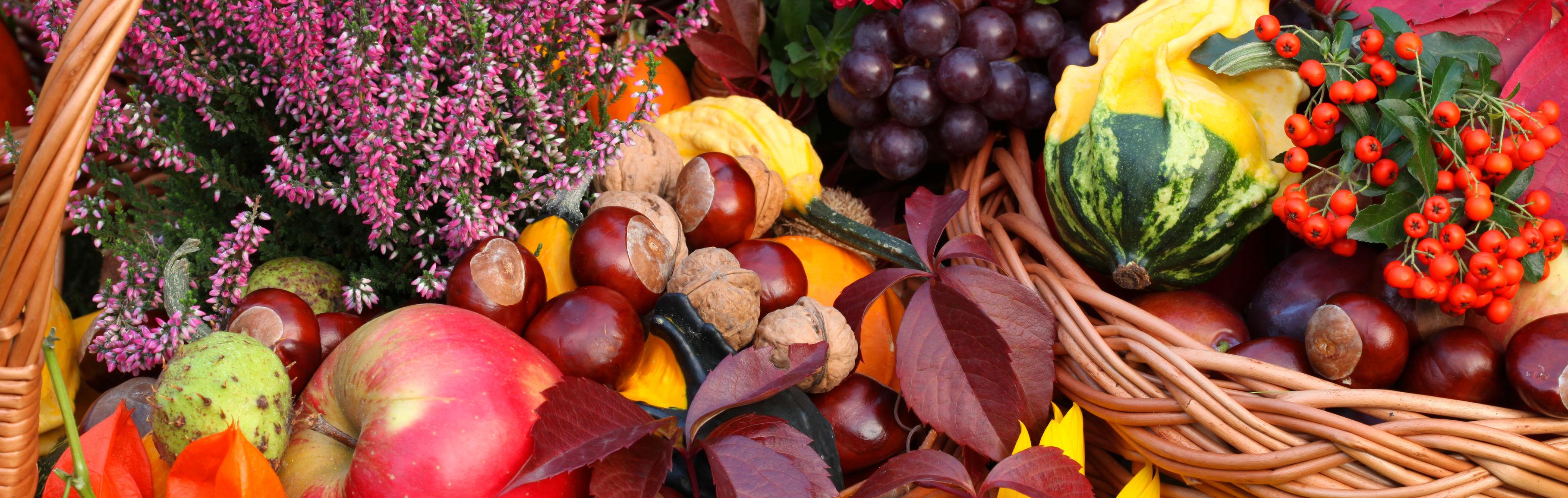 Kastanien_Herbst_groß